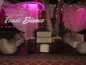 ambiente lounge / decoracion  fiestas, festejos  y eventos